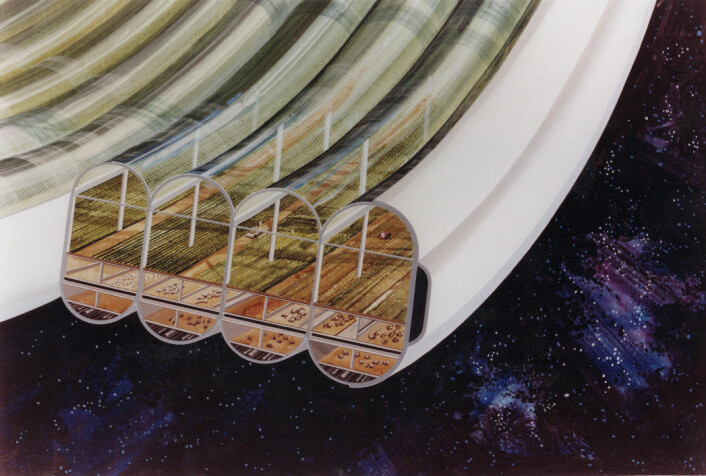 Jordbruksringene på romskipet. Hvis du ser jordbruksmaskinene, kan du se hva slags skala vi snakker om her. (Foto: (Bilde: NASA Ames Research Center))