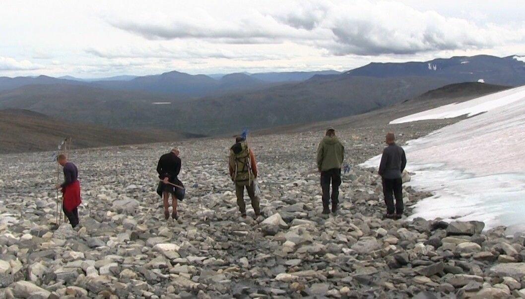 Her leter de etter gamle ting ved isen for noen år siden. (Foto: Lasse Biørnstad, forskning.no)