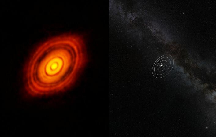 Her sammenlignes størrelsen til solsystemet vårt med HL Tauri og dens omliggende protoplanetariske skive. Selv om stjernen er mye mindre enn Sola, strekker HL Tauris skive seg nesten tre ganger lenger ut enn Neptuns bane rundt Sola. (Foto: ALMA/ESO/NAOJ/NRAO)