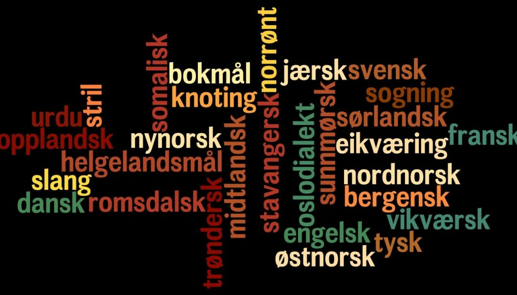 Forskerne vet mye om den historiske utviklingen fra dansk og tysk, men ikke så mye om hvilke nye ord som kommer inn i norsk gjennom sosiale medier og i møter mellom mennesker med ulike språk. (Illustrasjon: forskning.no)