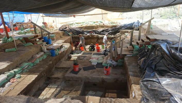 Slik ser det ut på det ut der arkeologene jobber i Cooper´s Ferry. (Foto: Loren Davis).