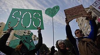 Tre konkrete råd til deg som gjerne vil hjelpe regnskogen: Støtt, boikott og stå sammen