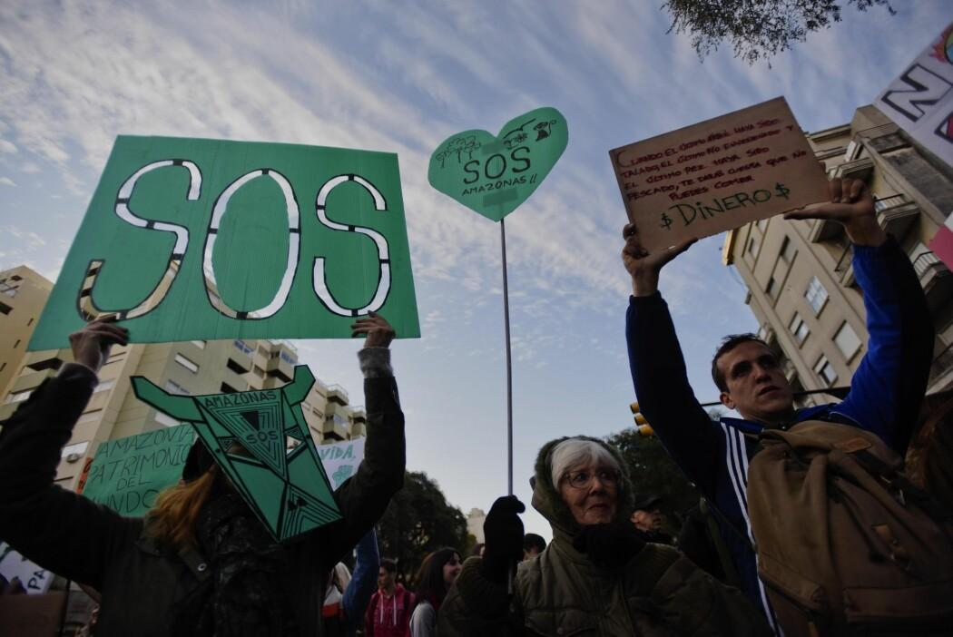 Flere steder i verden har demonstranter samlet seg foran brasilianske ambassader for å kreve handling. Her er et bilde fra Montevideo i Uruguay fra 23. august. Men er det noe du selv kan gjøre for å hjelpe regnskogen? (Foto: AP Photo/Matilde Campodonico)