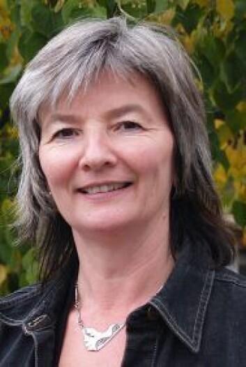 Professor Ingrid Guldvik har blant annet forsket på hvorfor menn stadig topper flertallet av partienes valglister, kommunalt og nasjonalt. (Foto: HiL)