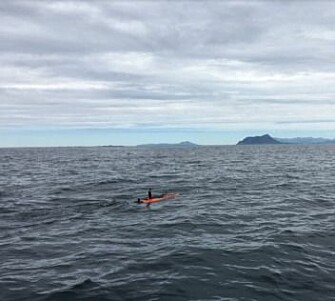 The smart autonomous underwater vehicle on its hunt for phytoplankton patches. (Photo: Trygve Fossum, NTNU)