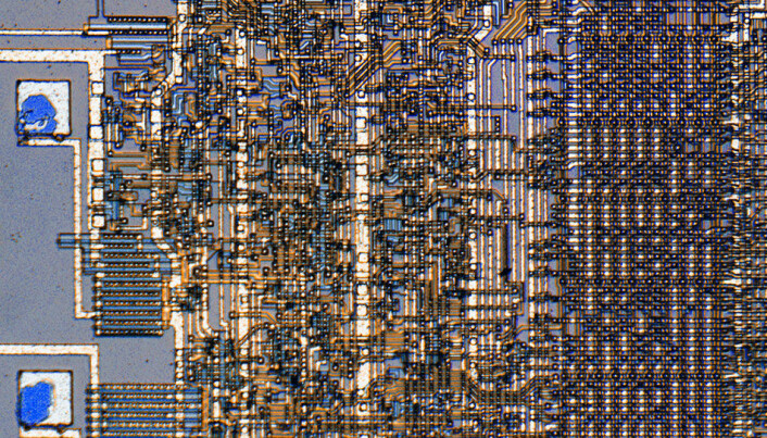 - eller til å lage elektroniske kretser, til å finne mønstre i store mengder data og mange andre anvendelser. Kan vi lære mer av maurene enn vi hittil har forstått?