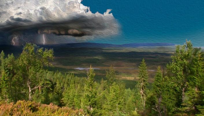 Sommeren 2014 var het og tørr. Trysils dype skoger ligger der i dag, omtrent som for 250 år siden.