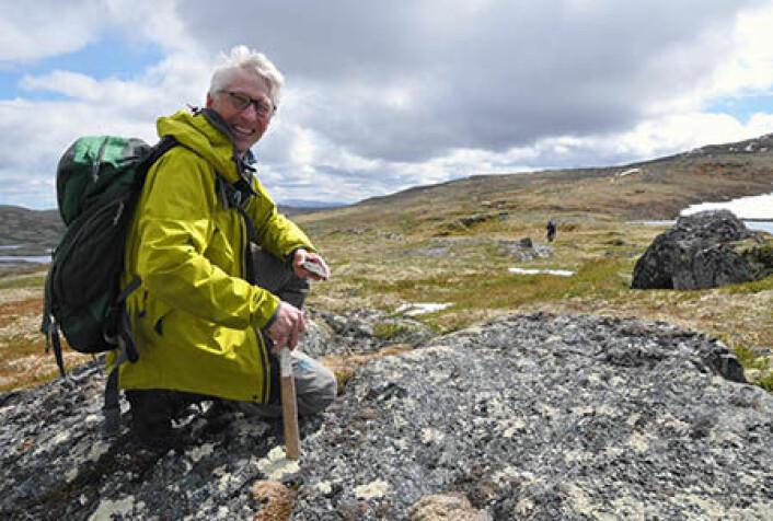 I en konglomeratbergart på fjellet tar geolog Tor Grenne en prøve for å bestemme alderen på mineralet zirkon. Resultatene kan gi en indikasjon på om tolkningen av den geologiske utviklingen stemmer. (Foto: Gudmund Løvø, NGU)
