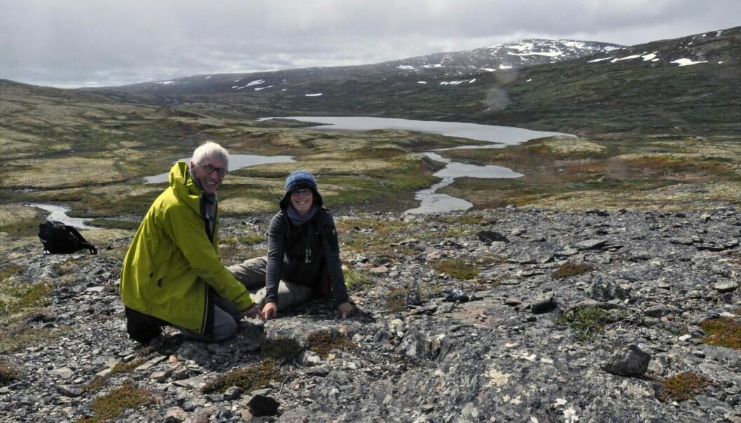 Forskerne Deta Gasser og Tor Grenne peker på grensen mellom det vulkanske og det sedimentære området i Trondheimsfeltet. Arbeidet handler om å få en bedre forståelse av geologien i malmrike områder i Trøndelag. (Foto: Gudmund Løvø, NGU)