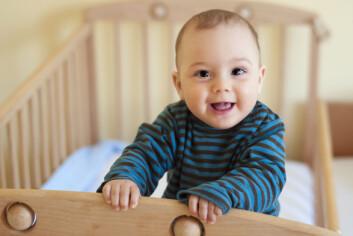 Barn som er født små, er tilpasset et liv med lite mat. (Foto: Microstock)