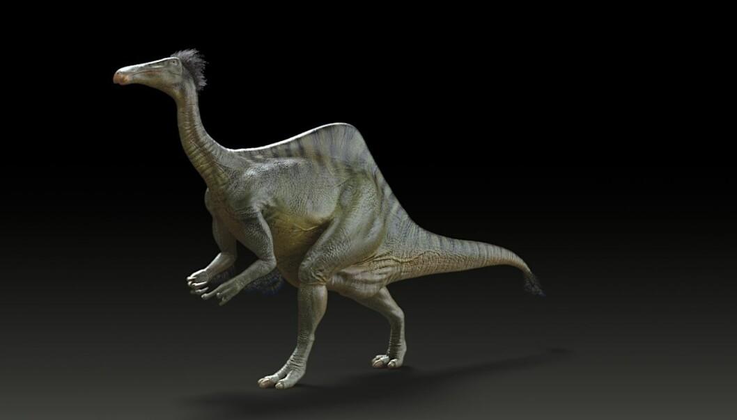 Rekonstruksjon av Deinocheirus mirificus. (Bilde: Yuong-Nam Lee (KIGAM))