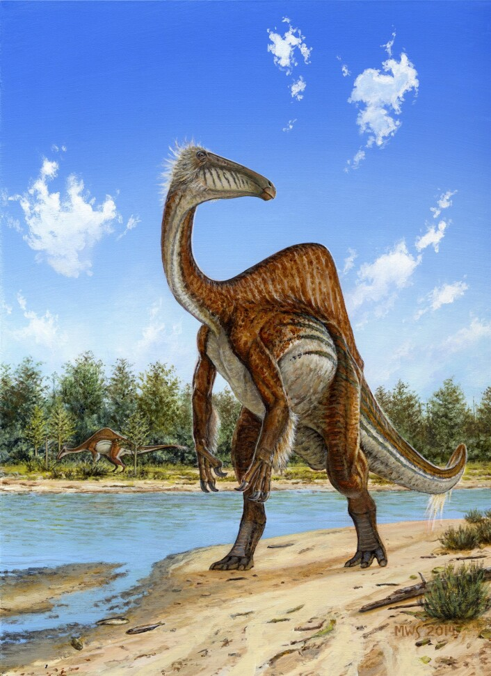 Deinocheirus mirificus, slik en kunstner har sett den for seg. (Foto: (Bilde: Michael Skrepnick))