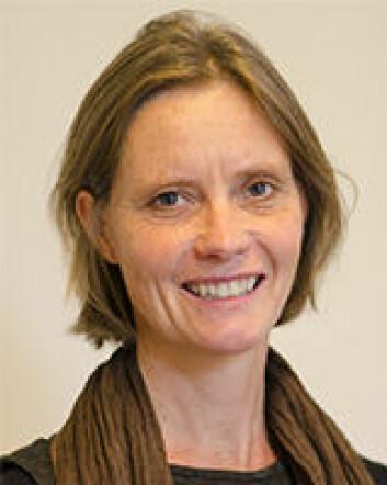 Anna Hagen Tønder, sivilingeniør og forskningskoordinator i Fafo.  (Foto: Fafo)