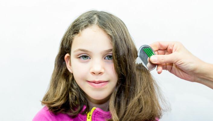 De med tykt, mellomlangt hår ser ut til å ha litt høyere risiko for å bli smittet med hodelus. (Illustrasjonsbilde: Per-Boge / Shutterstock / NTB scanpix)