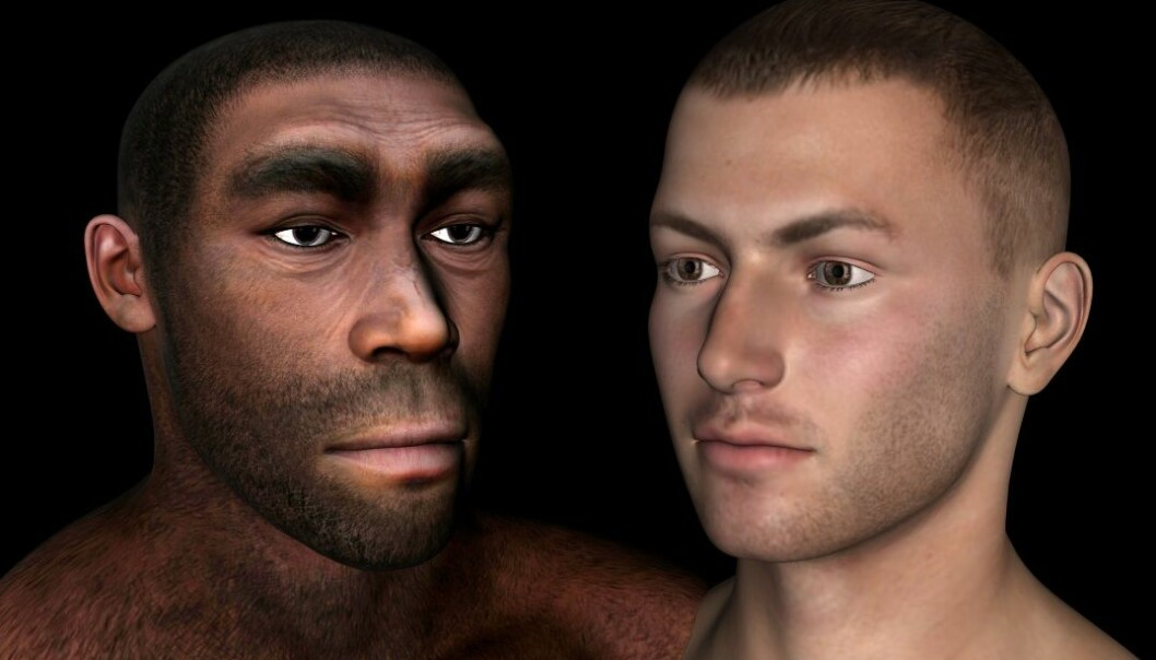 Har vi i det hele tatt dekke beviser for at mennesket nedstammer fra apene?  (Foto: Microstock)