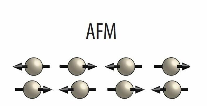 I antiferromagneter er det ikke sånn at magnetismen på atomnivå er organisert i samme retning, som i de vanlige magnetene. Isteden er denne organisert i et mønster der magnetismen knyttet til ett atom peker i motsatt retning av naboens.  (Foto: (Illustrasjon: NTNU))