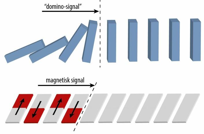 Idéen er å plassere ørsmå nanomagneter så tett på hverandre at disse kan snakke sammen gjennom sine magnetiske felt. Ved at retningen på spinnene i en magnet får spinnene i nabomagneten til å snu, som igjen får dennes nabo til å snu sine spinn, kan et magnetisk signal bevege seg som en kaskade.  (Foto: (Illustrasjon: NTNU))