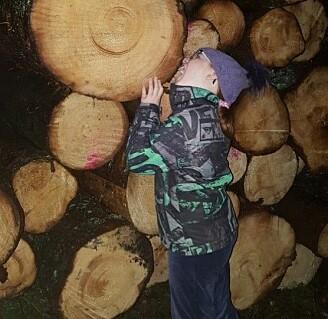 – Vi kan spise trær, sier forsker Bjørge Westereng. Avansert kjemi og teknikk kan omdanne tømmerstokken til den helsebringende karbohydraten mannan, med smak som den herligste karamell. (Foto: NMBU)