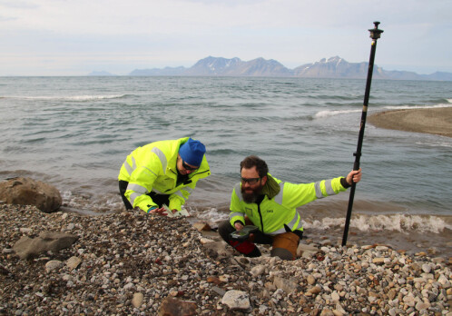 Scientists stumble upon an unknown grave in Svalbard