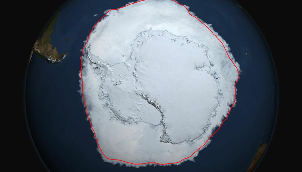 Den 19. september i år hadde isen i Antarktis rekordstor utstrekning. Den røde linja viser gjennomsnittlig utstrekning fra da målingene startet i 1979 og fram til 2014. (Bilde: NASA's Scientific Visualization Studio/Cindy Starr)