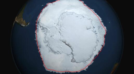 Rekordstort isdekke rundt Antarktis