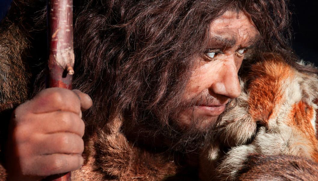 Forfedrene våre var nok ikke de dumme huleboerne vi ofte har forestilt oss. Ny forskning viser at de på mange punkter var ganske høyt utviklet.  (Foto: Microstock)