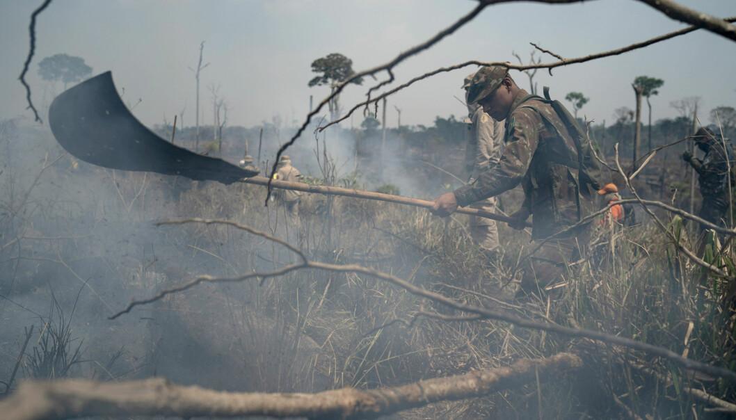 En brasiliansk soldat jobber med brannslukking i et område i Nova Fronteira-regionen i Novo Progresso i Brasil i forrige uke. Satellittdata viser økende luftforurensing i landet. (Foto: Leo Correa / AP / NTB scanpix)
