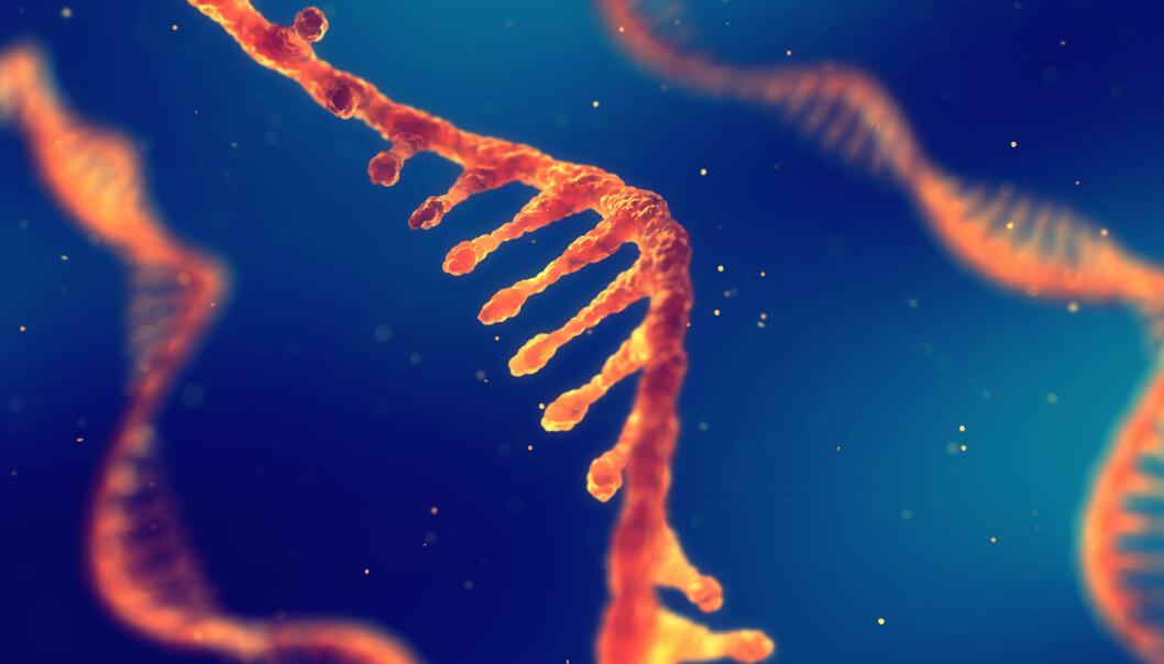 Var det første livet RNA-tråder som kopierte seg selv? (Illustrasjon: nobeastsofierce / Shutterstock / NTB scanpix)