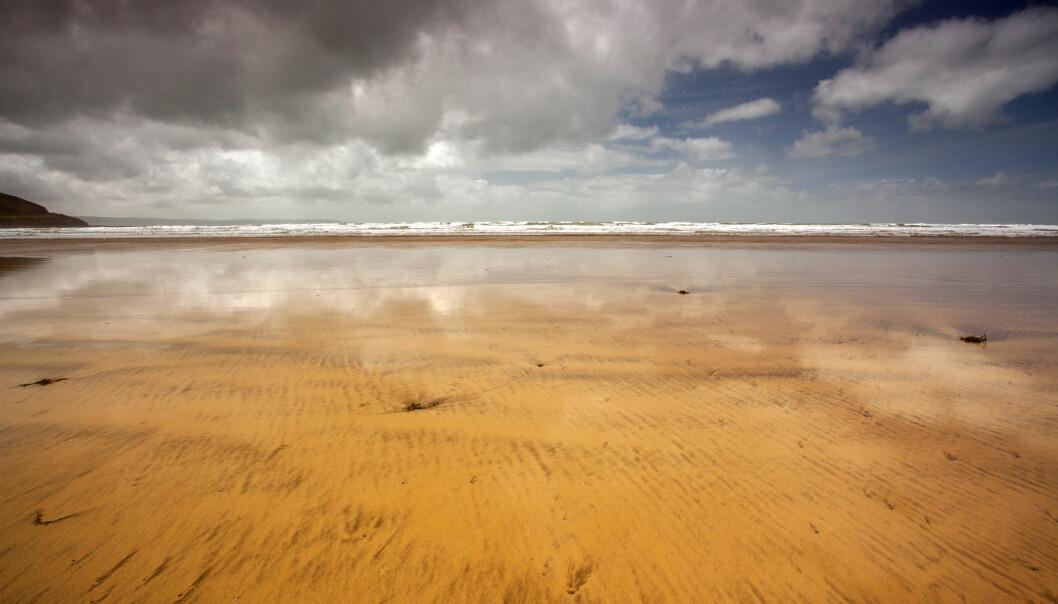 Kanskje var det tidevannet som trakk seg frem og tilbake over leire som satte i gang noe viktig. (Foto: Twymanphoto / Shutterstock / NTB scanpix)