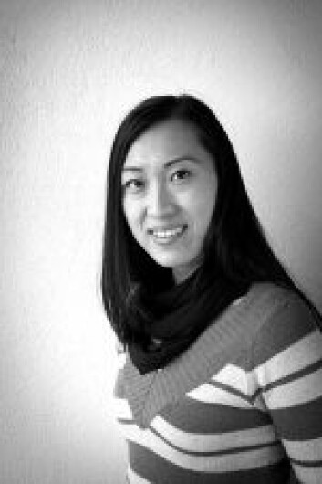 Reiselivsforsker Xiang Mei, Østlandsforskning
