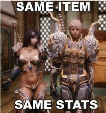 Ekstremt kjønnsstereotype spillfigurer er hverdagsmat i onlinespillene. Teksten «Same item - same stats» viser til at rustningen til figurene har samme effekt, til tross for at de her helt forskjellig utformet.