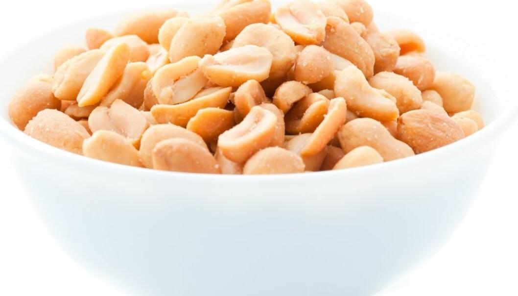 Kan ha funnet forklaringen på peanøtt-allergi