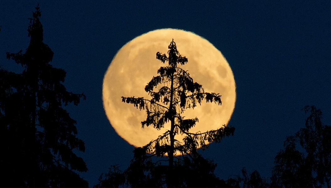 Fullmåner er tradisjonelt sett skumle greier, og for mange blir det ikke mindre skummelt av at det er fredag den 13. samtidig. Fredagens fullmåne er til og med en sjelden mikromåne, og det er 13 år til noe sånt skjer igjen. (Illustrasjonsfoto: Jon Olav Nesvold / NTB scanpix)