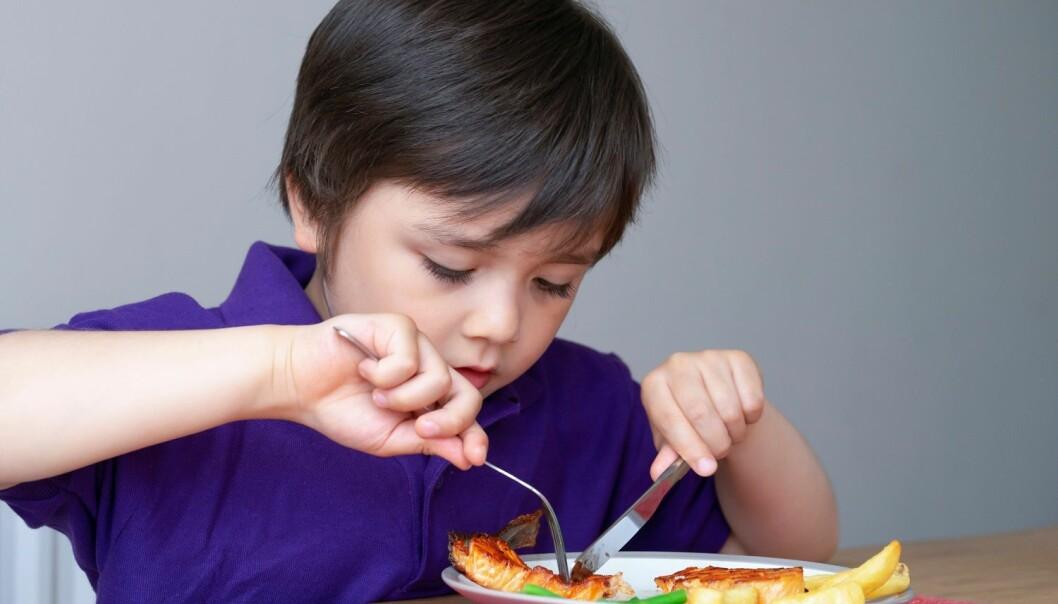 Barn bør introduseres for fisk eller tran tidlig i livet, allerede fra de er rundt ett år gamle. Disse barna har nemlig sterkt redusert risiko for eksem, astma og pipende pusting når de blir seks år. (Illustrasjon: Ann in the uk / Shutterstock / NTB scanpix )