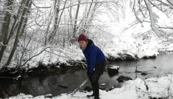 Bilde fra sist vinter der ph.d.-stipendiat Hannah Wenng sjekker apparatet som måler partikler i vannet i Skuterudbekken i Akershus. (Foto: Joris Stuurop)