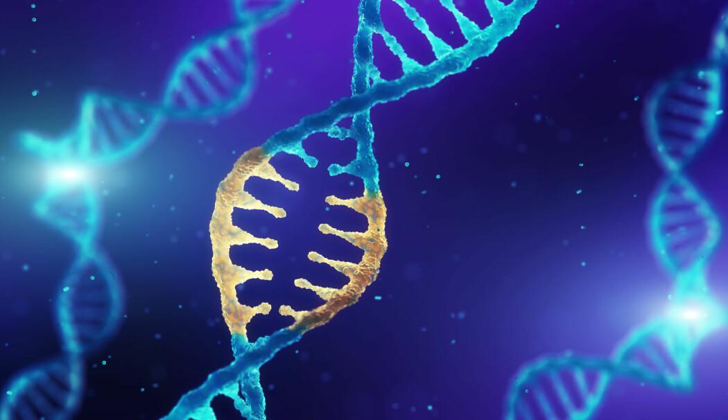 – Nå vet vi at vi i prinsippet kan bruke CRISPR for å endre menneskelige stamceller, at de kan overleve i en pasient og at det kan være trygt, sier en uavhengig forsker om den nye studien. (Foto: Shutterstock / NTB scanpix)