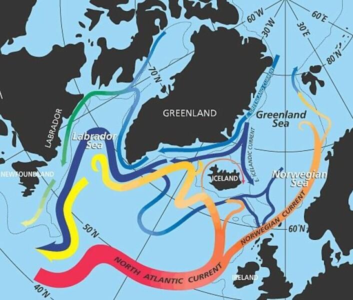 Den nordatlantiske havstrømmen, bedre kjent som Golfstrømmen, er delvis ansvarlig for de milde nordeuropeiske vintrene. Den strømmer inn i de nordiske hav, hvor den kjøles ned om vinteren og slipper ut varme til atmosfæren. (Foto: (Illustrasjon: NASA/Wikimedia Commons))