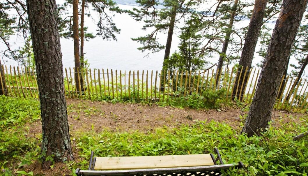 Nye gjerder er satt opp langs kjærlighetsstien på Utøya. Arbetet med å etablere minnesmerker etter terroråtaka på Utøya og i regjeringskvartalet har skapt debatt.  (Foto: Scanpix, Vegard Wivestad Grøtt)