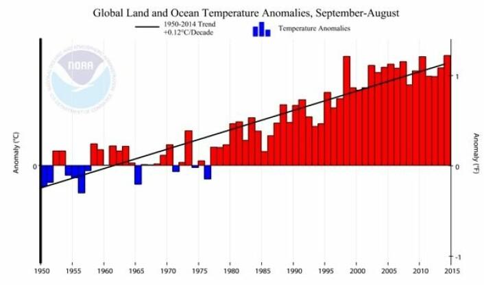 Trenden i global temperatur siden 1950 er  0,12 grader pr tiår. (Figur: NOAA)