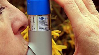 Folat kan øke risikoen for astma