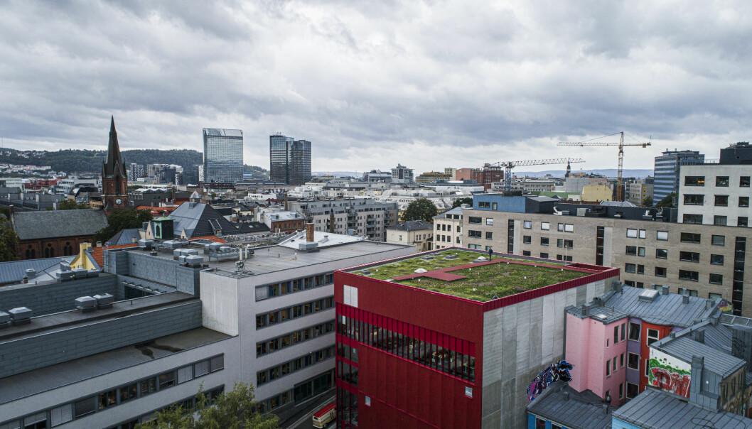 Forskere har sammen med flere industripartnere har gjenskapt et grunnlendt kalkmarksystem på taket til Vega Scene i Oslo. (Dronefoto: Asplan Viak ved Jostein Thorvaldsen)