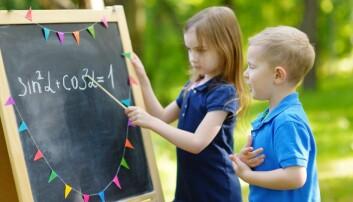 - Medelever kan være en fantastisk ressurs for elevers læring, sier skoleforsker Siv M. Gamlem.  (Foto: Microstock)