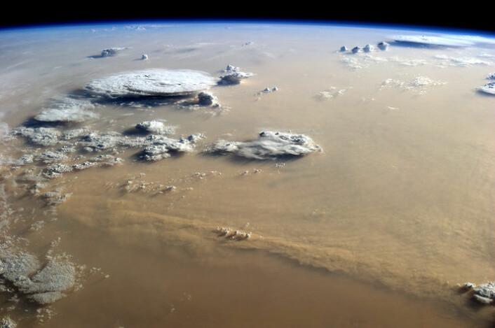 En sandstorm i Sahara fotografert av ESAs tyske astronaut, Alexander Gerst, fra den internasjonale romstasjonen, 400 kilometer over bakken. (Foto: NASA/ESA)