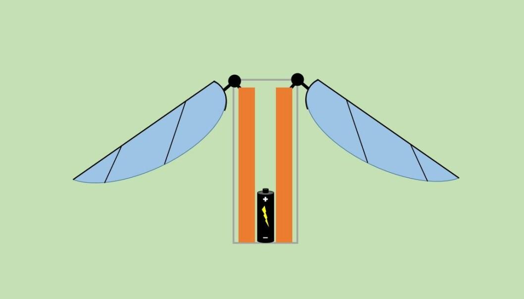 Forenklet versjon av hvordan piezoelektriske materialer kan brukes til å etterligne måten en bie flyr på. (Illustrasjon: Ola Grandal)