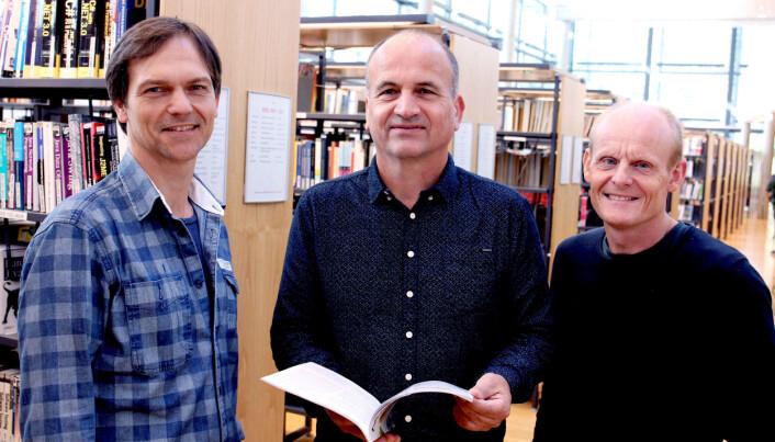 Forskerne, fra venstre: Are Branstad, Ansgar Ødegård, Jon Reiersen. (Foto: USN)