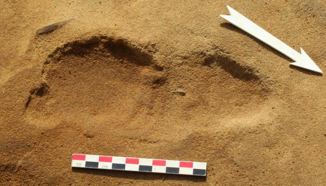 Bildet viser ett av fotavtrykkene som en neandertaler laget da han eller hun gikk over sanden for 80 000 år siden. (Foto: Dominique Cliquet)