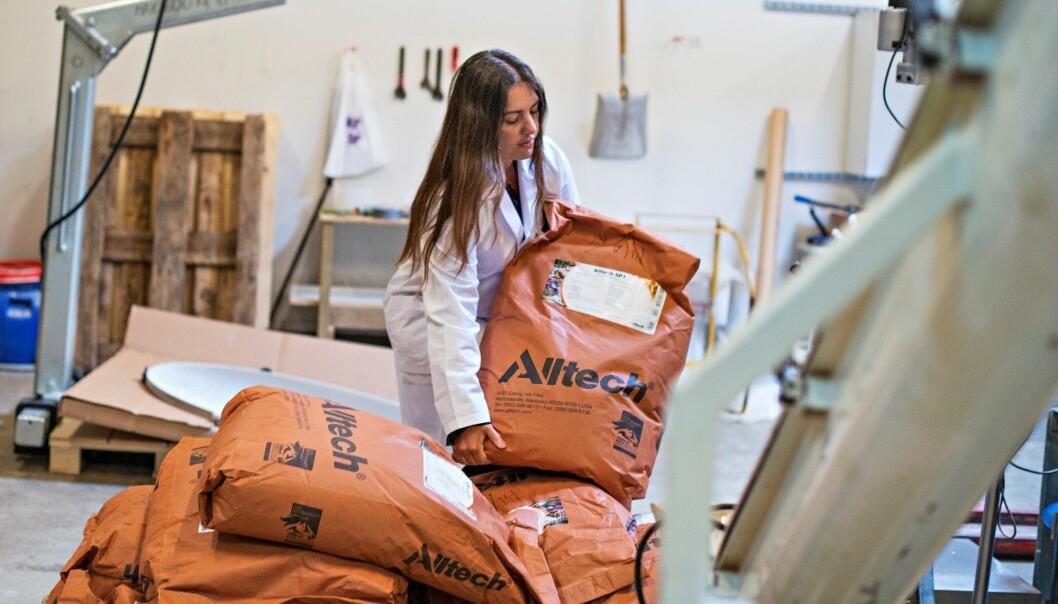 Katerina Kousoulaki har testet et algemel i fôr til oppdrettslaks. (Foto: Jon-Are Berg-Jacobsen, Nofima)