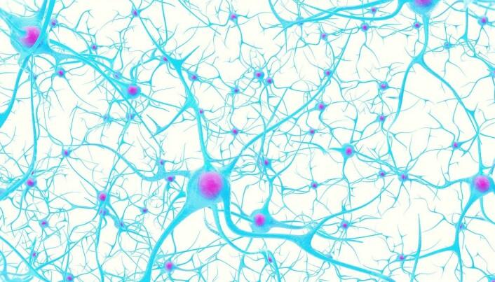 Kreftsvulster danner overraskende forbindelser til friske hjerneceller