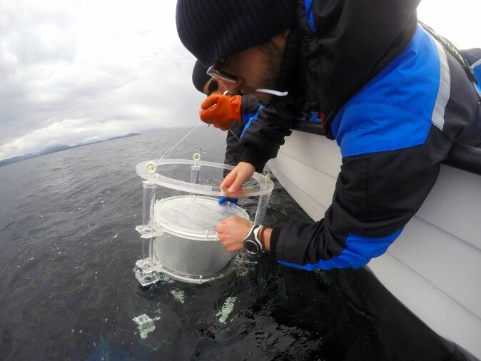 Alessandro Cresci and Cameron Thompson deploying drifting chambers in the fjords.