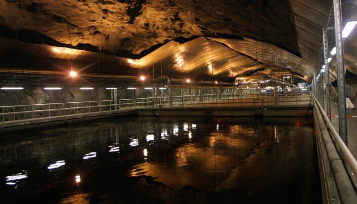 Det er en stor jobb å rense vannet som renner ut av boligene våre for avføring, urin, såpe, matrester og andre avfallsstoffer, før det slippes ut i elver, vann eller fjorder. Bildet er fra Bekkelaget renseanlegg i Oslo (Foto: Terje Bendiksby / Scanpix)